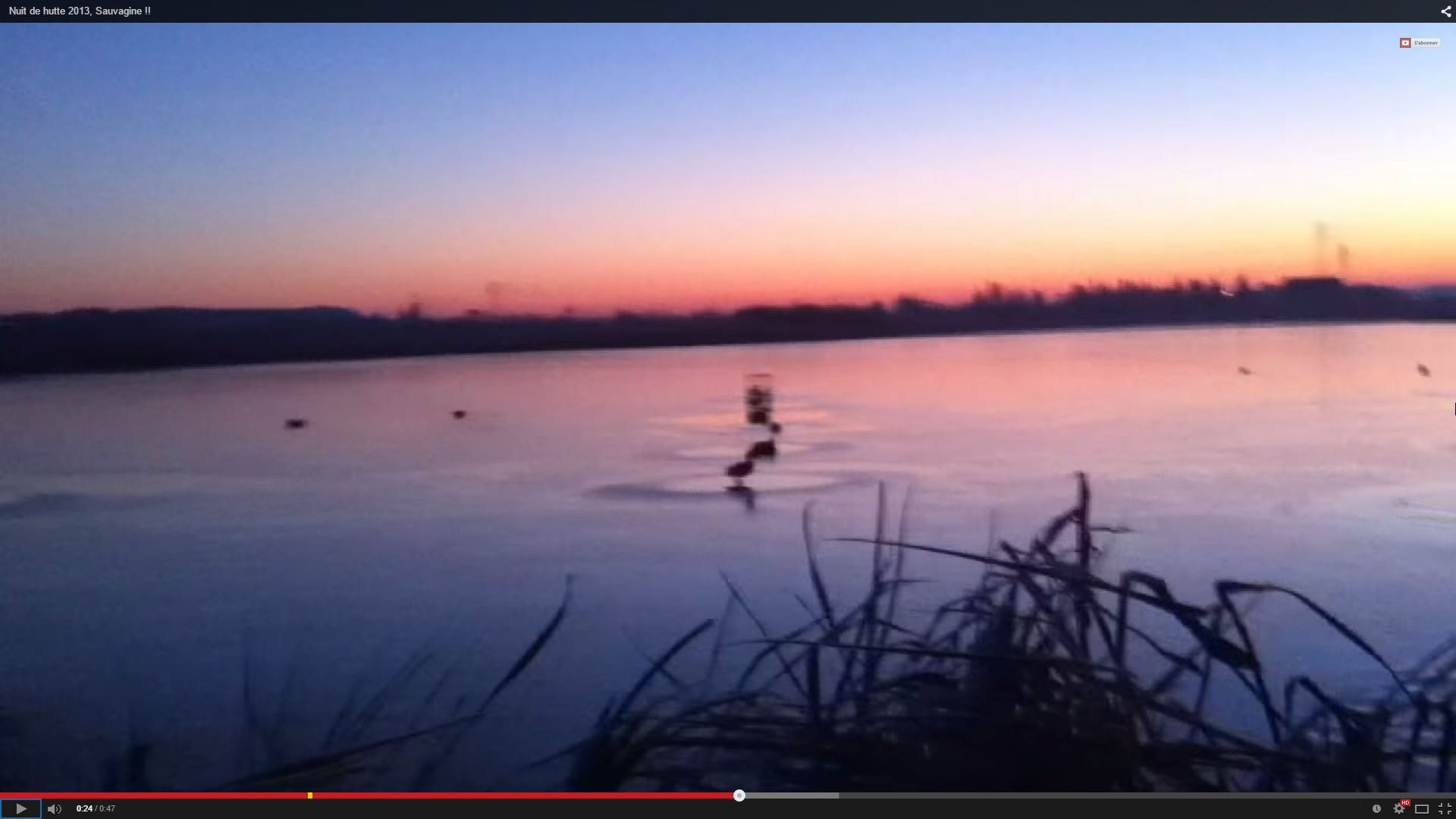 2015-02-11 10_21_50-Nuit de hutte 2013, Sauvagine !! - YouTube