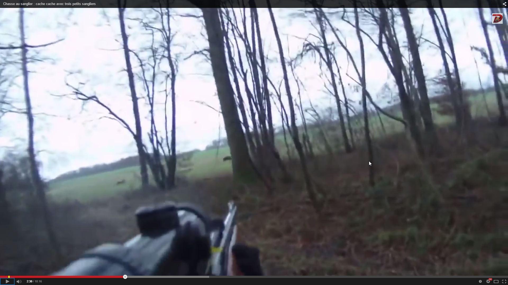 2015-02-11 10_00_34-Chasse au sanglier _ cache cache avec trois petits sangliers - YouTube