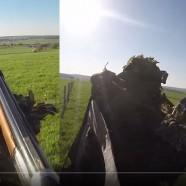 Nouvelle vidéo de chasse aux corvidés pour Feliew