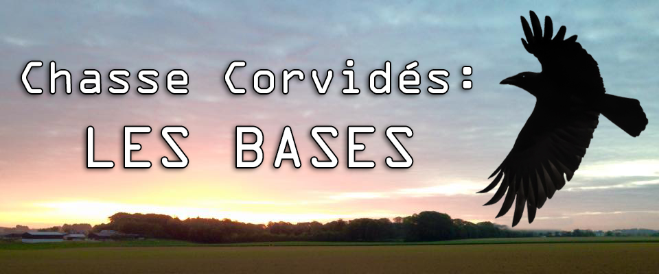 Corvidés Couv